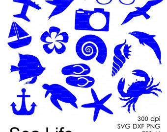 Ocean Sea (eps, svg, dxf, ai, png) Dolphin, Shell, Crab, Starfish Clipart, Vectors, Overlays, Silhouettes, Digital Stamps Decal Vinyl