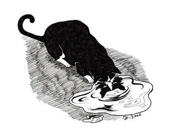 Puddle, original cat illustration by Johanna Öst