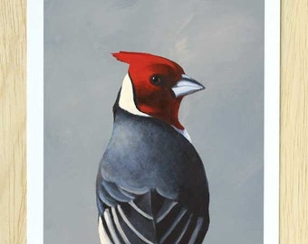 Often Fall Prey To The Popular Fallacy Known As Positive Thinking 8 x 10 Art Print - Cardinal - Bird - Animal - Nature - Gift