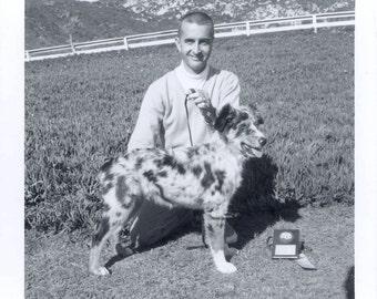 vintage photo 1950 Australian Shephard Puppy Dog Poses perfectly