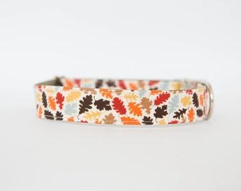 Dog Collar - Autumn Leaves