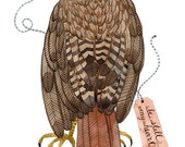 LARGE Red Tail Hawk Print, giclee art print, bird orf prey art, natural history, watercolor bird art, large print, 13 x 19