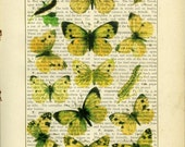 Mixed Media Yellow Butterfly Print, Lepidoptera, Natural History, Country Cottage Decor, Dictionary/Book Page Art Print