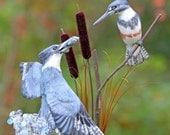 Belted Kingfisher Love Birds handmade wedding cake topper