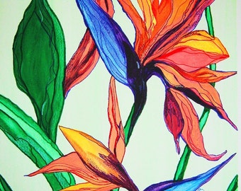 Signed Numbered Limited Edition Glicee Water Color 11x14 Print Island Flower
