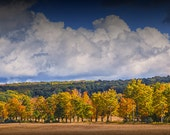 Colorful Autumn Trees in a Row with Cloudy Blue Sky by Sleeping Bear Dunes National Seashore Michigan No.9364 A Fall Landscape Photograph
