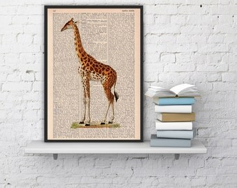 Summer Sale Giraffe Dictionary Book Print  Altered art on upcycled book pages ANI011