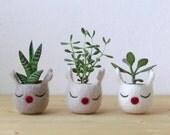 Christmas reindeer planter / Christmas felt vase / Succulent planter / Christmas decor / Rudy the red nosed reindeer planter - Set of three