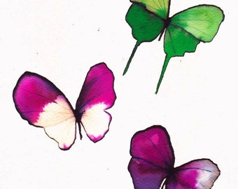 "butterfly trio pink, magenta green and white 8 X 10"" original watercolour painting"