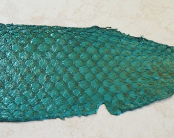 "Fish Leather in Teal Green for Bead Embroidery Tilapia Leather 10x3.5"" One fish side"