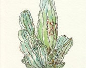 Green Prickly Desert Cactus, Original Watercolor Painting, Ink Illustration, 5x7, sage, succulent, mint, lime