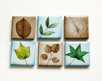 Square Magnets, Leaves, Magnets, Fridge Magnets, Magnets, button magnets, Leaf, Nature Magnets, Blue, Green, Brown (4615)