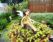Garden Pixie Glimmer HANDMADE Sprite Faerie Fairy Doll