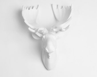 OVER STOCK SALE - White Faux Moose Head w/ White Antlers - The Royale - by White Faux Taxidermy - Chic Faux Animal Wall Sculpture