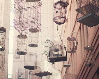 Bird Photography, Bird Cage, Whimsical, Nest, Nature, Travel photography, Australia print, Sydney, Bird cages, vintage decor, romantic