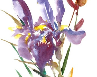 Blue Purple Irises, original watercolor painting, 12 X 9 in, irises floral art, flowers painting, blue wall art