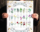 """Plant These to Help Save Bees 16x20"""" Poster *OR* 8x10"""" Print"""