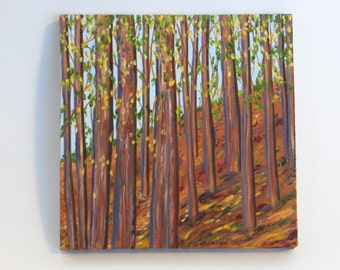Wooded Landscape Trees, Original oil painting 8 x 8 inches, wrapped canvas art, Springtime trees