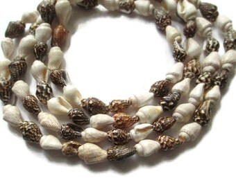 Vintage HIGBEE'S Cleveland Hawaiian Shell Lei Necklace