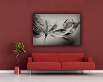 Black and White Nature Photograph, Black & White Autumn Leaf Photo, Fall Leaf Photograph, Horizontal Wall Art, Fine Art Nature Photography