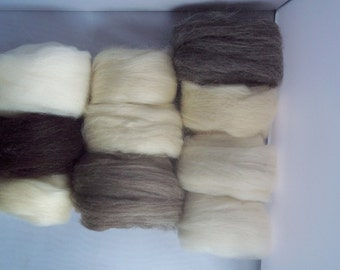 LONGWOOL Breed Sampler, Spinning Fiber, 10 natural shades 150g/5.3oz