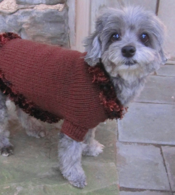 Maltese Dog Knitting Pattern : Hand knit dog sweater-brown dog sweater/dog clothing/yorkie