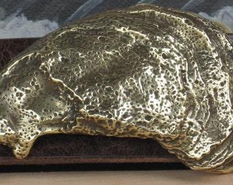 Gulf Coast Oyster Shell Buckle
