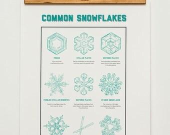 Common Snowflakes // Screenprint // Wall Chart