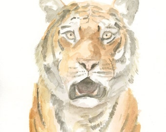 Tiger Original Watercolor Painting Archival Print