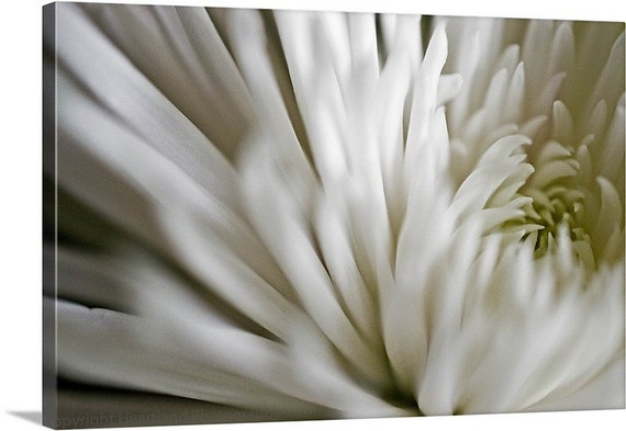 Large Flower Canvas, Macro Photography, White Photo, Neutral Colors, White Home Decor, Big Wall Art, Oversized Canvas, Extra Large Art