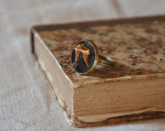 Dog tooth ring