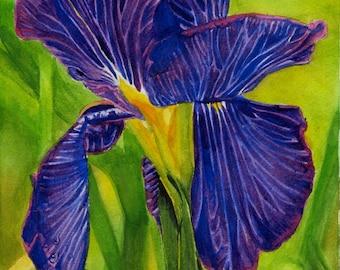 """Original Watercolor Painting """"Iris"""""""