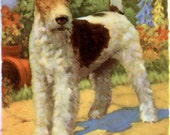 Vintage Wire Haired Terrier Dog Illustration A O Scott  1930s Dog Print Platt and Munk
