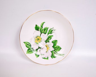 Vintage Queen Anne Saucer Christmas Rose England Bone China Hand Painted Ridgway Potteries