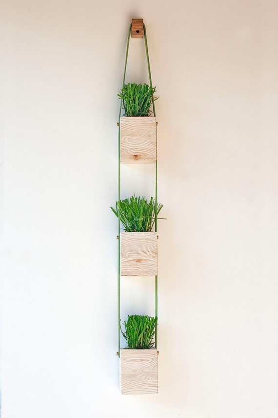Tier Wood and Leather Hanging Wall Planter