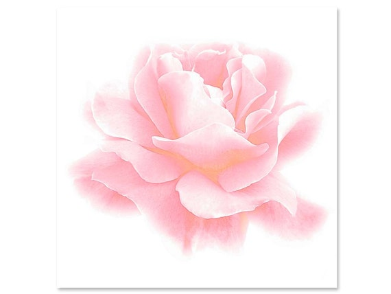 rose wallpaper cards instant - photo #16