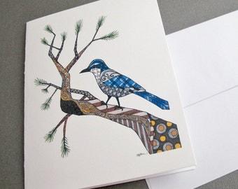 Blue Jay Stationery Set - Set of 8 Blank Inside Card Set - Winter Blue Jan - California Scrub Jay