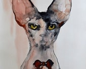Sphynx cat painting original watercolor painting - portrait. Animal drawing. A unique gift for cat lovers, for birthday, wall art for home.