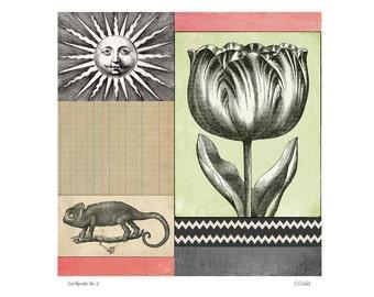 Botanical Collage on Paper Giclee Art Print - Tulip Garden No. 2