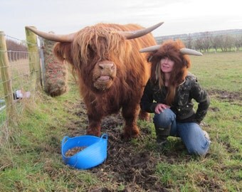 Highland Cow Hat headwear Designer Hats made by Calf Sanctuary fundraising for our Rescues