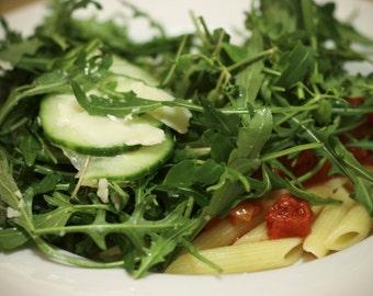1,500+ Arugula- (Sylvetta) Wild Italian- Lettuce (Herb) Seeds