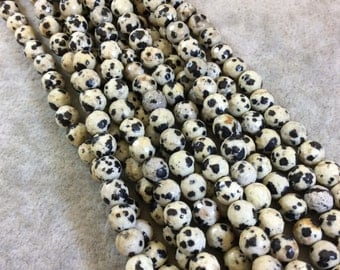 Round Dalmatian Jasper Faceted Bead Strand, 6mm, approx. 62 beads per strand