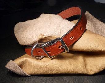 Simple leather dog collar