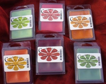 FREE SHIPPING!! Scented wax melts, tarts for wax melters-Comfort Light Candle Melts-HANDMADE!!