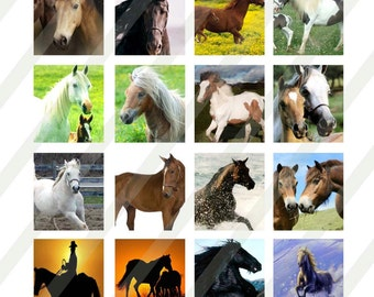 Horses digital collage sheet 4x6  0.75x0.83 for scrabble tiles  INSTANT DOWNLOAD