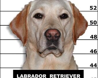 24x36 Poster; Labrador Retriever