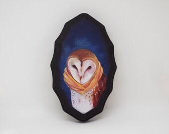 Winter Barn Owl Portrait