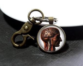 Anatomy Keychain Gift For Doctor Human Brain Anatomy RN Keychain Gift For Nurse In Training Nurse Keychain of Brain Anatomy Doctor Keychain