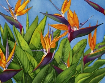 Watercolor painting...WINGS OF GOLD...birds of paradise...giclee
