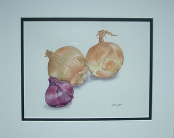 Original watercolour painting of onions with mount. Unframed